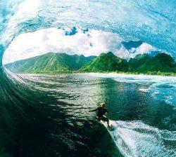 surfing-280x224
